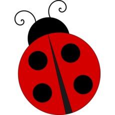 Ladybug 476344 640