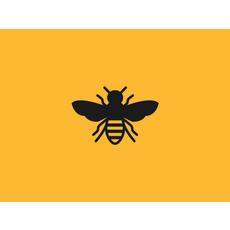 Bee 1x