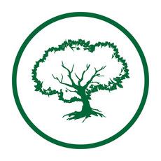 Zeytin agaci logo