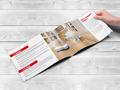 Proje#28520 - Elektronik, e-ticaret / Dijital Platform / Blog, Bilişim / Yazılım / Teknoloji Katalog Tasarımı  -thumbnail #14
