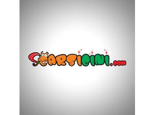 Carsicini2
