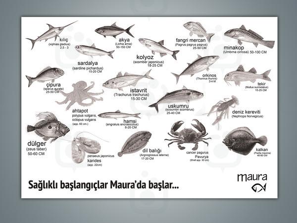 Maura4