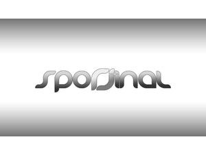 Sporjinal logo2