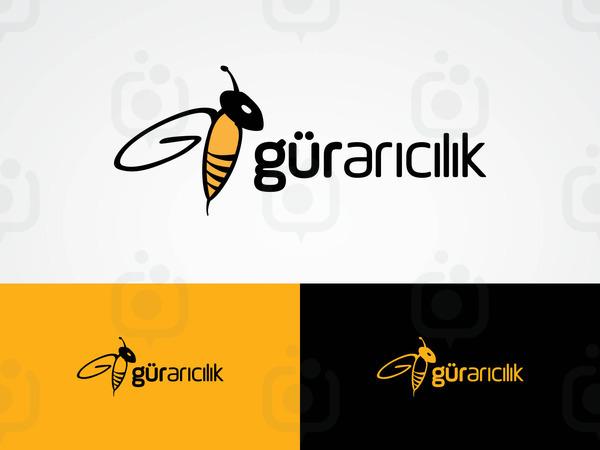 Gur aricilik 01