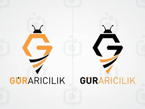 Gur aricilik 04