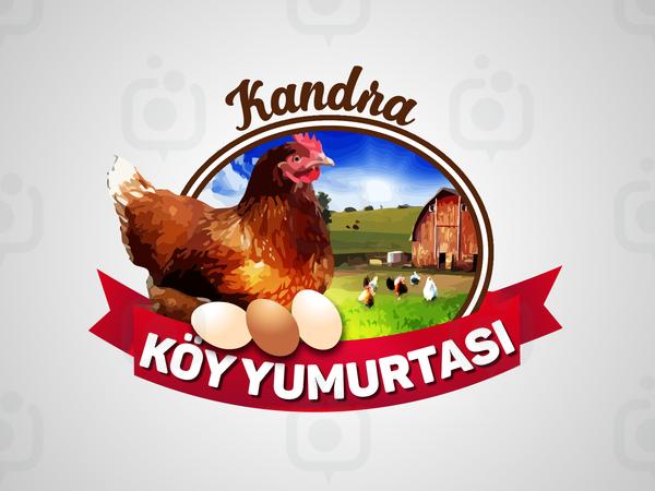 K y yumurtasi6