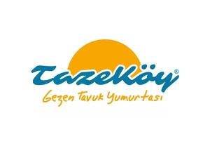 Tazekoy1