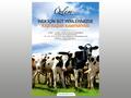 Proje#31215 - Tarım / Ziraat / Hayvancılık Afiş - Poster Tasarımı  -thumbnail #11