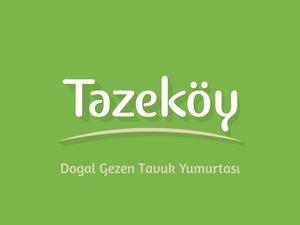 Tazek y4