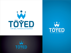 Toyedthb01