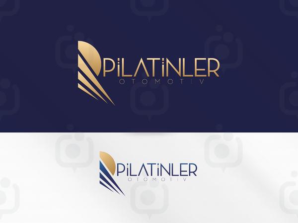 Platinler logo