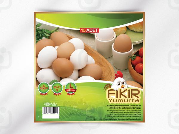 Fikir yumurta 2