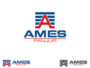Ames1
