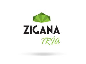 Zigana1
