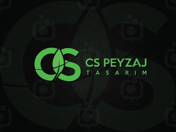 Peyzaj2