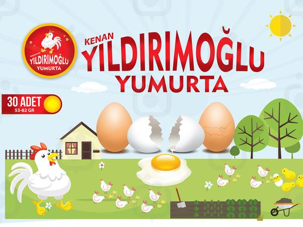 Yumurta yildirim 13