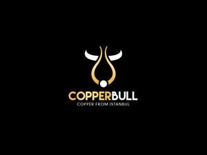 Copper bull 02