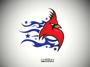 Thk phoenix2