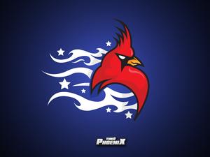 Thk phoenix2 blue
