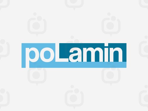 Polaminlogo3