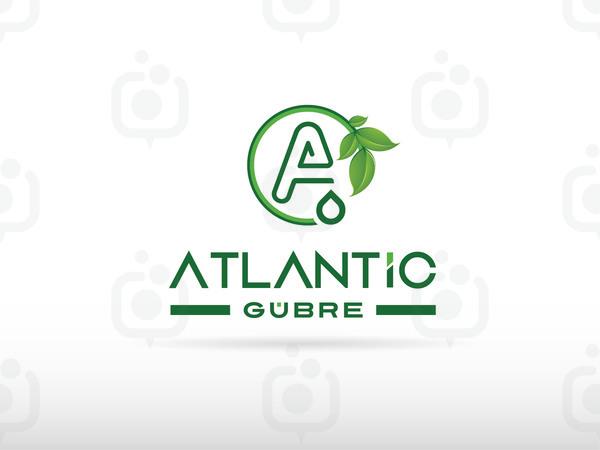 Atlant c1