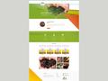 Proje#69308 - Tarım / Ziraat / Hayvancılık Statik Web Sitesi (html5+css)  -thumbnail #11
