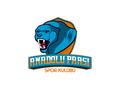 Proje#72259 - Spor / Hobi Logo Tasarımı - Kampanya Paket  -thumbnail #16