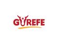 Proje#72430 - Gıda Logo Tasarımı - Avantajlı Paket  -thumbnail #27