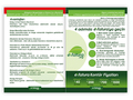 Proje#74246 - e-ticaret / Dijital Platform / Blog, Hizmet El İlanı Tasarımı - Ekonomik Paket  -thumbnail #3