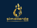 Proje#82557 - e-ticaret / Dijital Platform / Blog Logo Tasarımı - Avantajlı Paket  -thumbnail #69