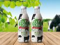 Proje#84449 - Gıda Ambalaj Üzeri Etiket - Altın Paket  -thumbnail #1