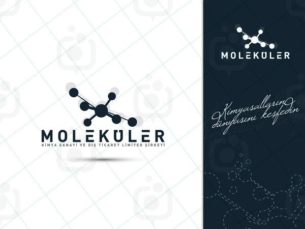 Molek ler 01