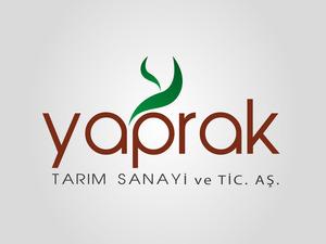 Yaprak4