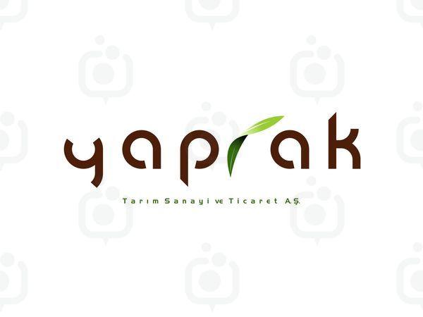 Yaprak1