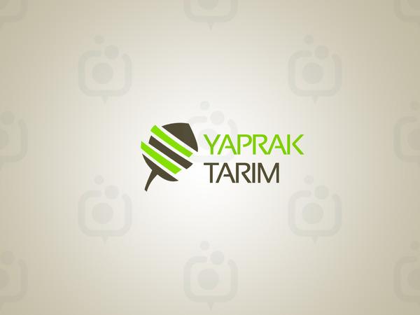 Yaprak trm2
