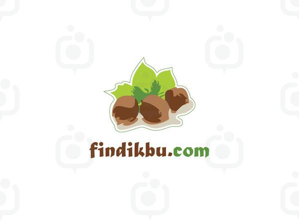 Fin01