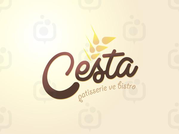 Cesta1