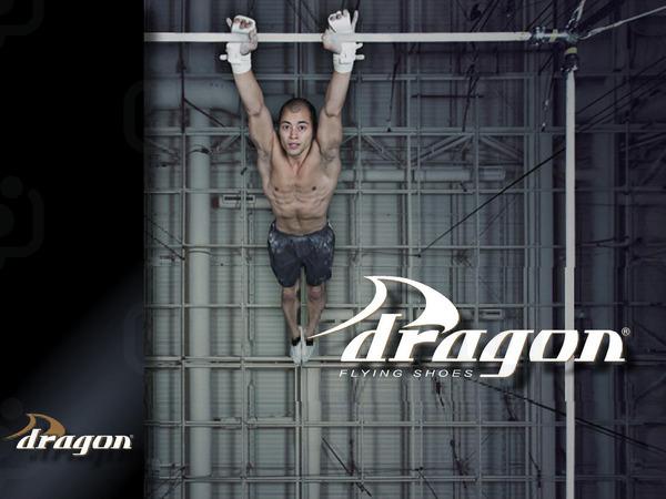 Dragonlogo2