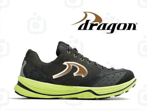 Dragonlogo3
