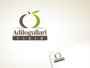 Adil2