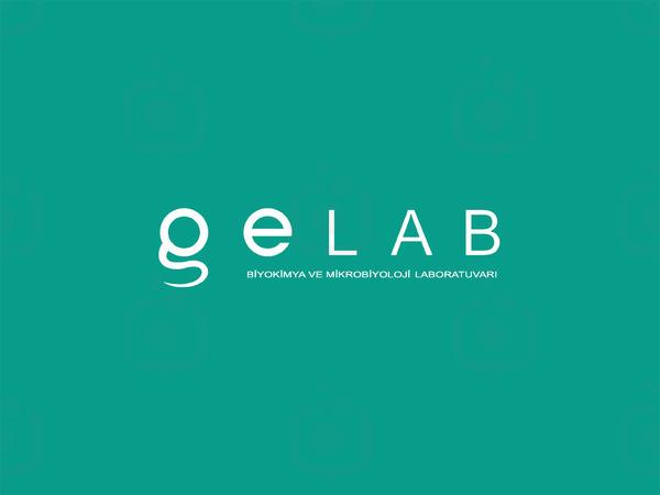Ge lab5 copy