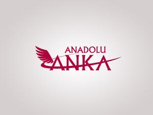 Anadolu anka 2
