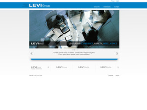 Levi grup web