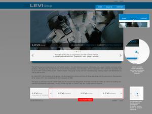 Levi grup web01 sunum