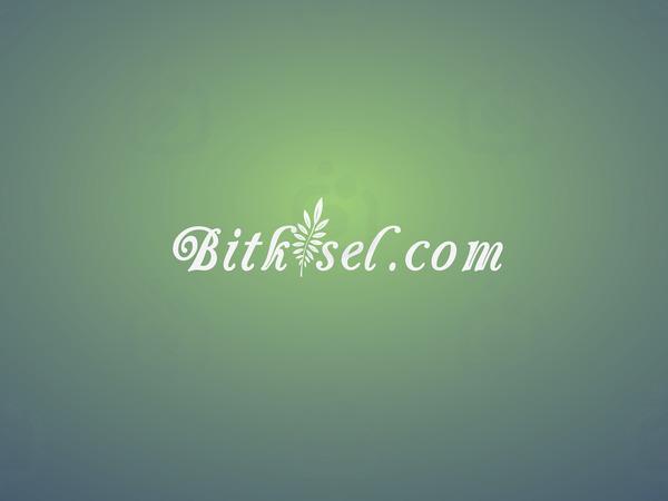 Bitkisel.com logo  2 1