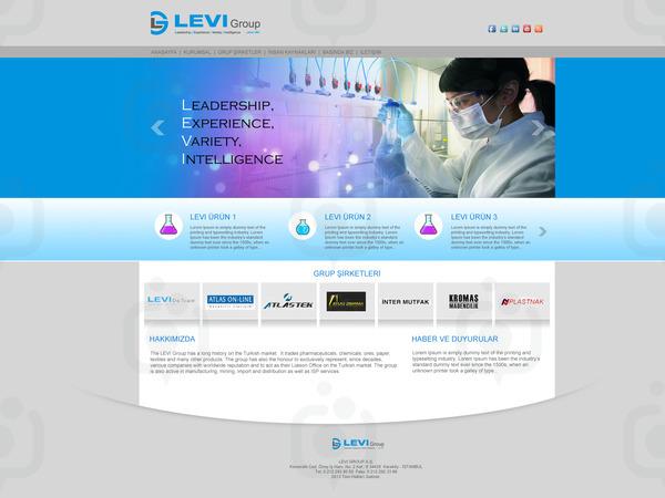 Levi web2