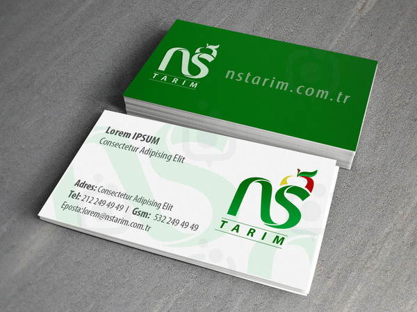 Ns card v001