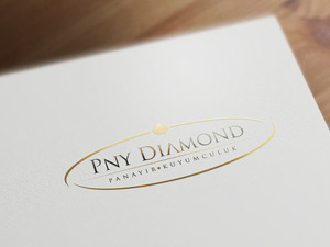 Pny diamond 2
