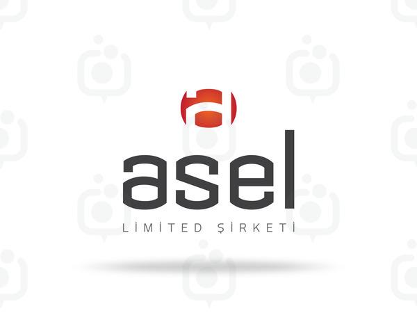 Asel logo sunum 2