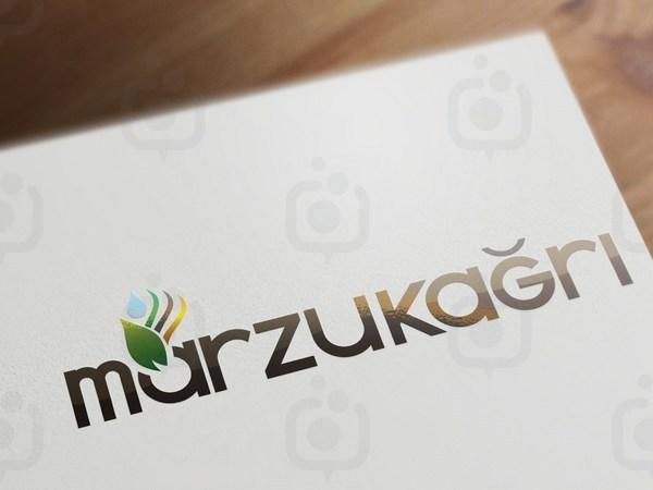 Logo mockup display  10  1600 x 1200